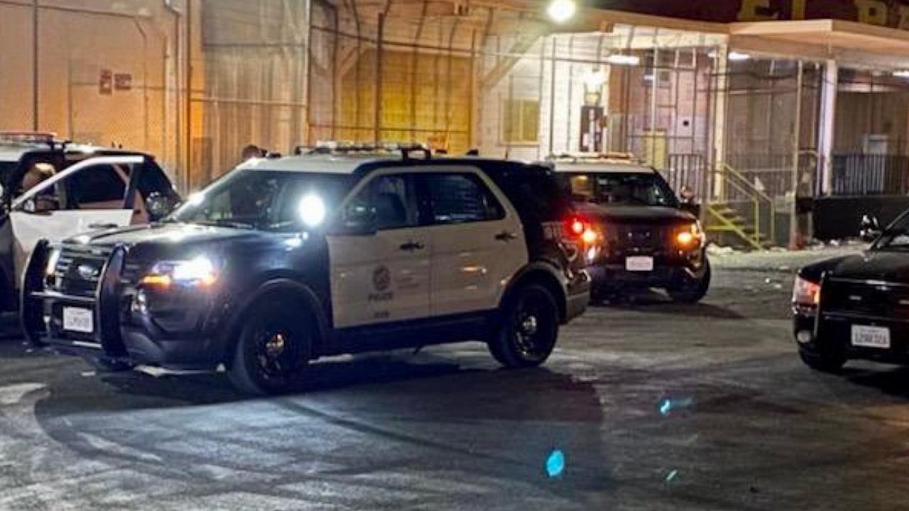 LAPD (2)