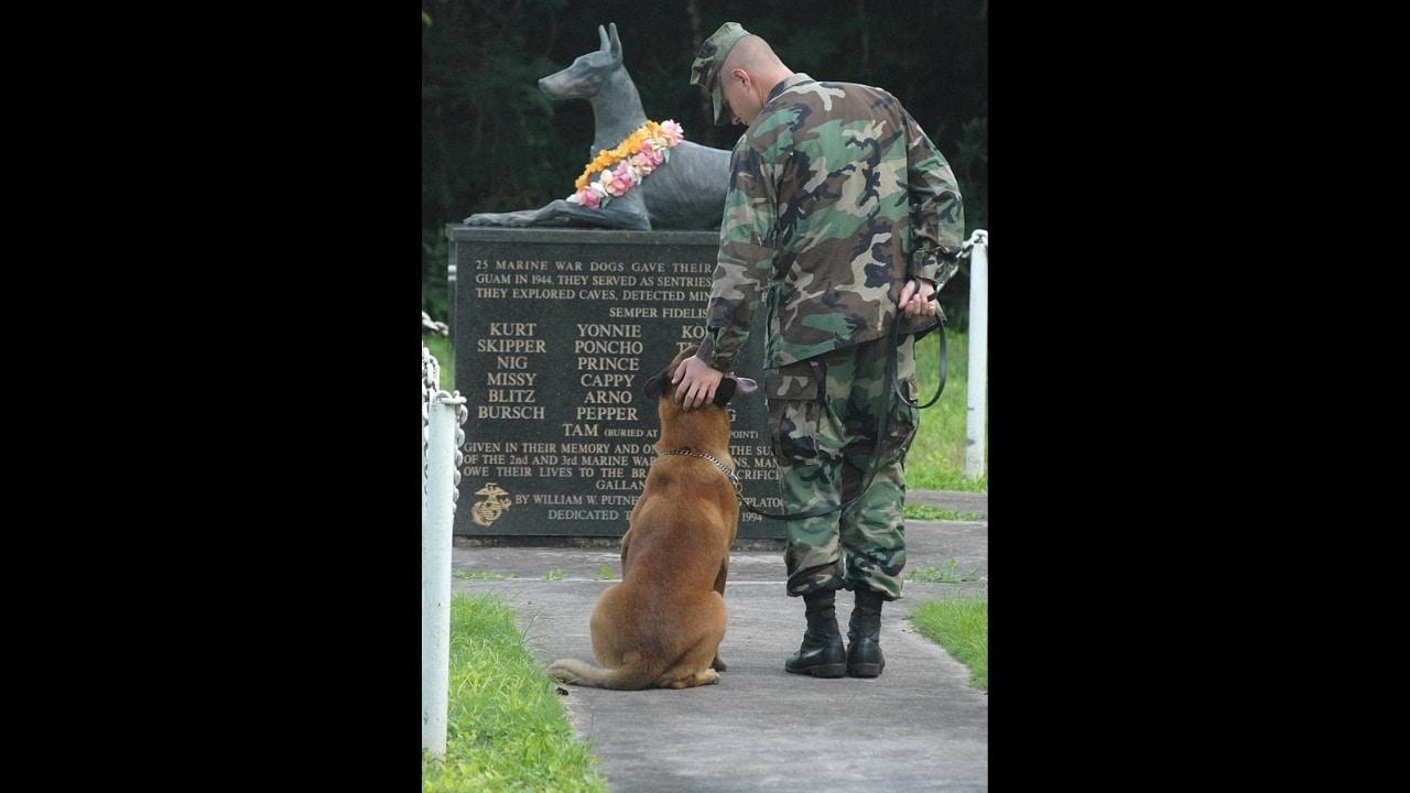 Navy dog handler at War Dog Memorial, Guam Naval Base